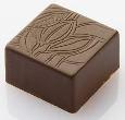 csoki14