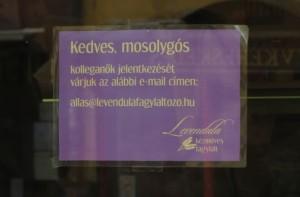 Énidő Levendula fagyi